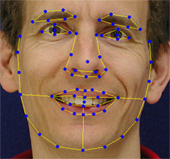 Image: Statistical facial appearance model