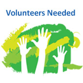 hands up Volunteer image