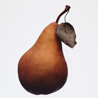 Pear - allergy information (InformAll: Communicating about